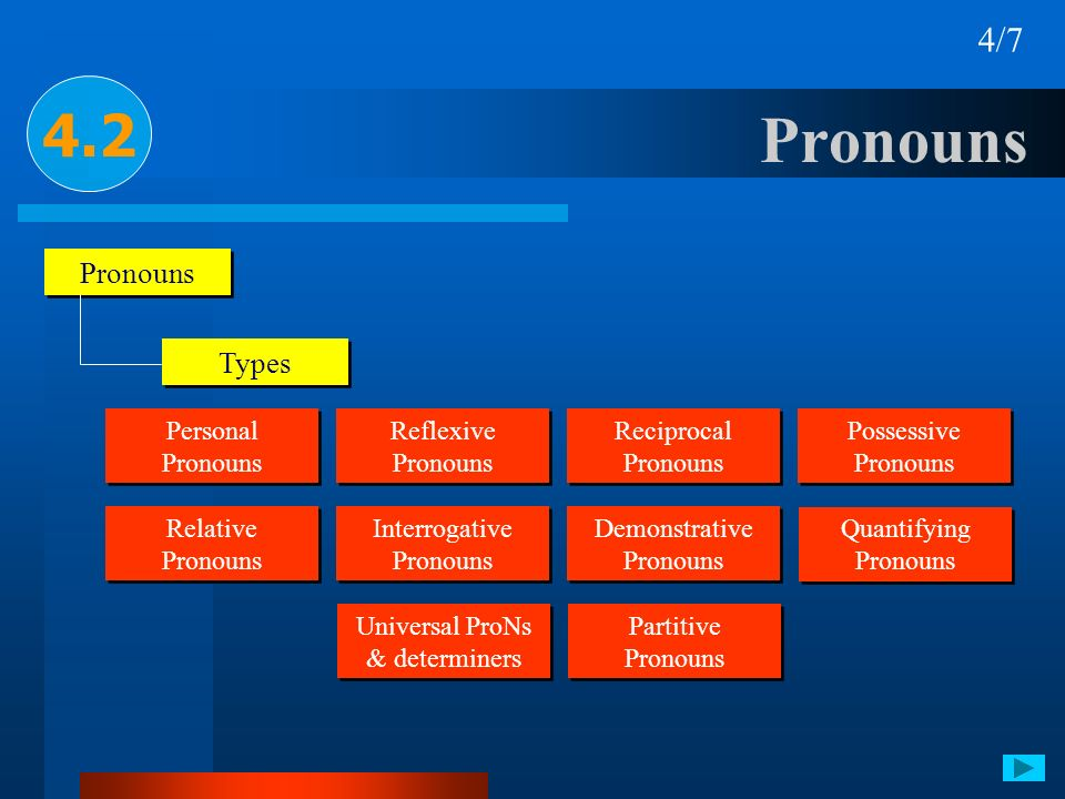 Universal ProNs & determiners