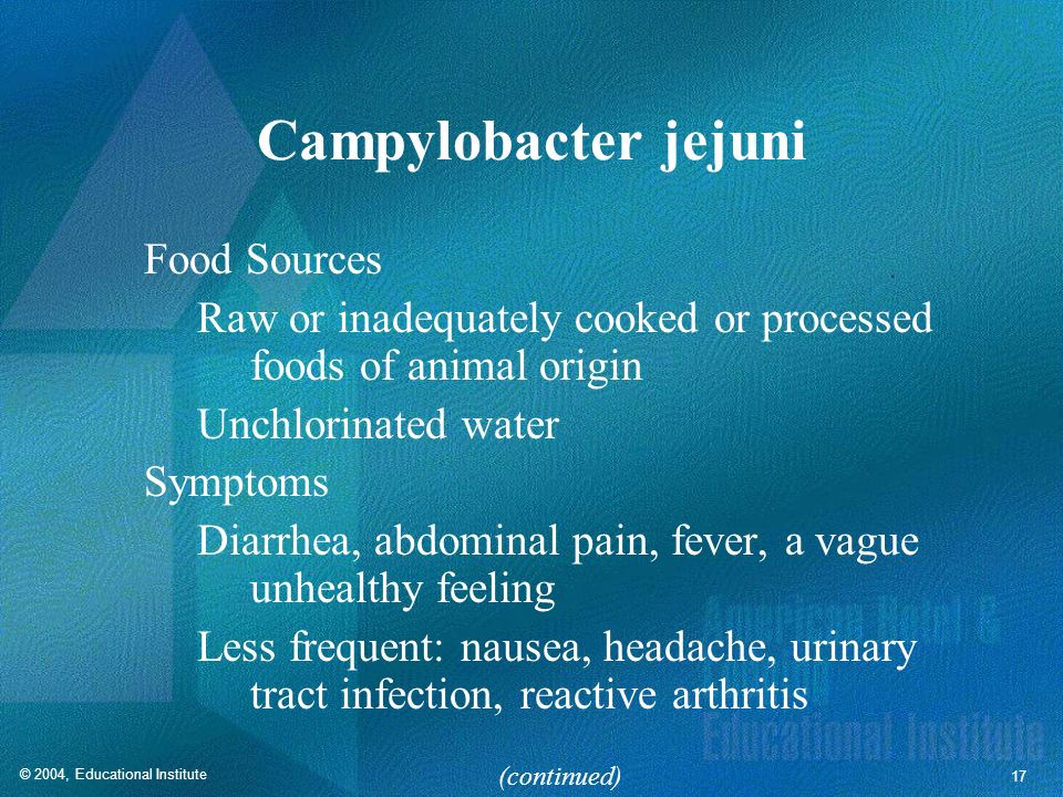 Campylobacter jejuni Food Sources