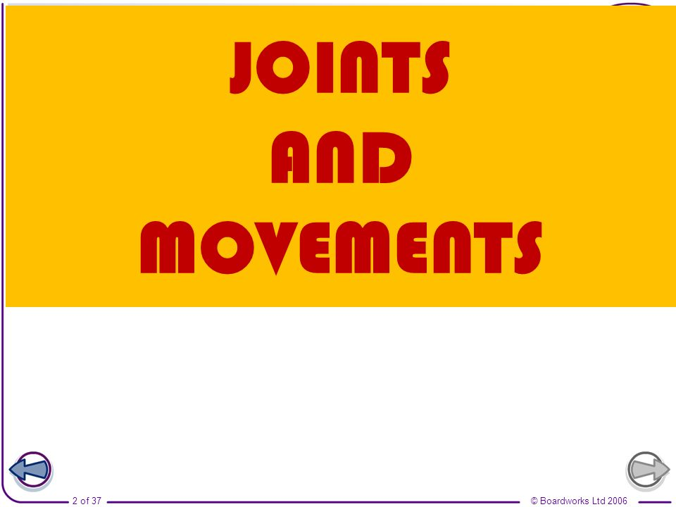JOINTS AND MOVEMENTS