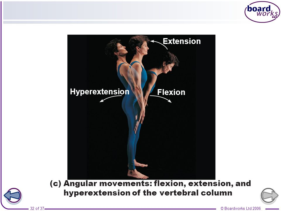 Hyperextension Flexion. Extension.