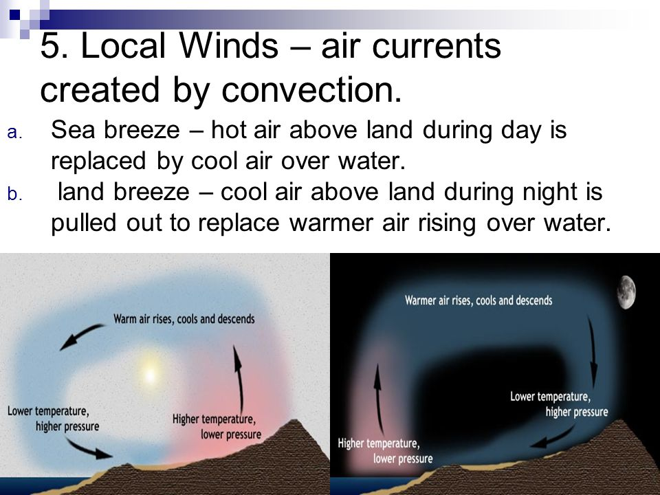 5. Local Winds – air currents created by convection.