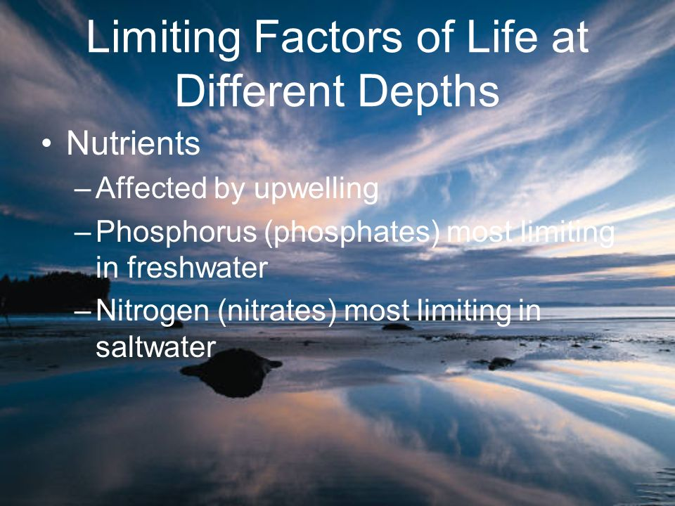 Limiting Factors of Life at Different Depths