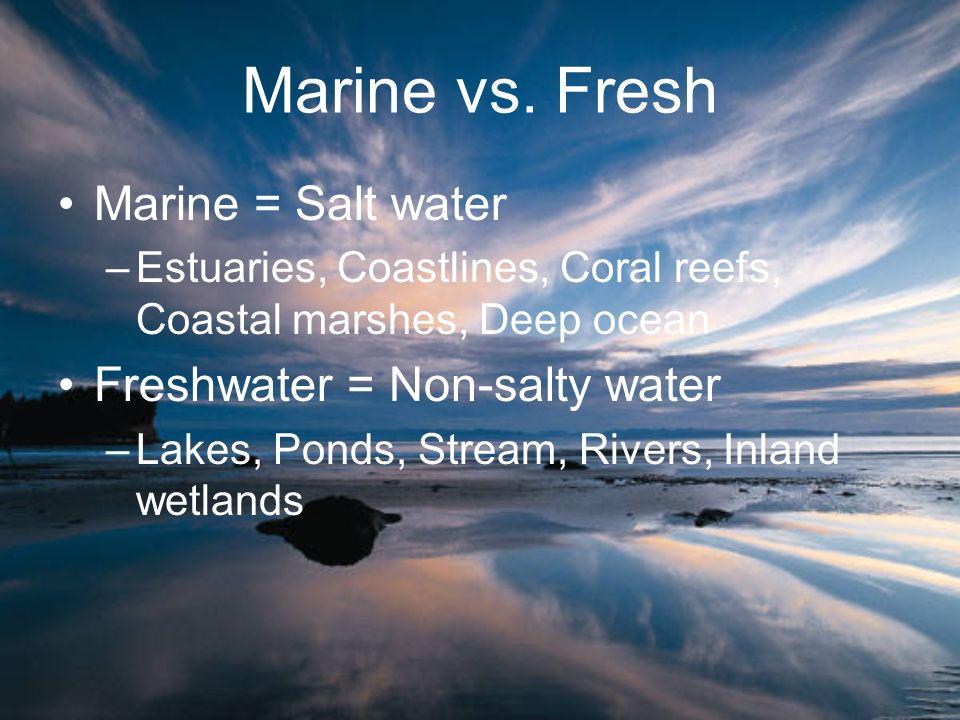 Marine vs. Fresh Marine = Salt water Freshwater = Non-salty water
