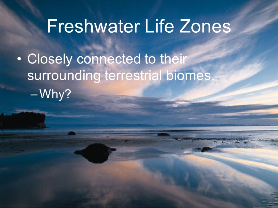 Freshwater Life Zones Closely connected to their surrounding terrestrial biomes. Why