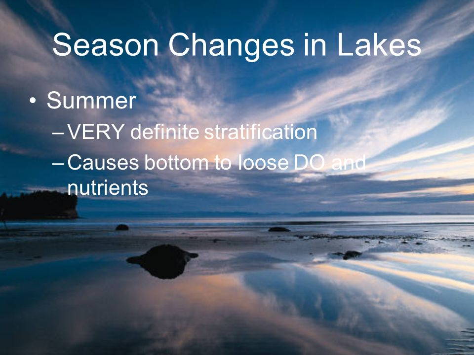 Season Changes in Lakes