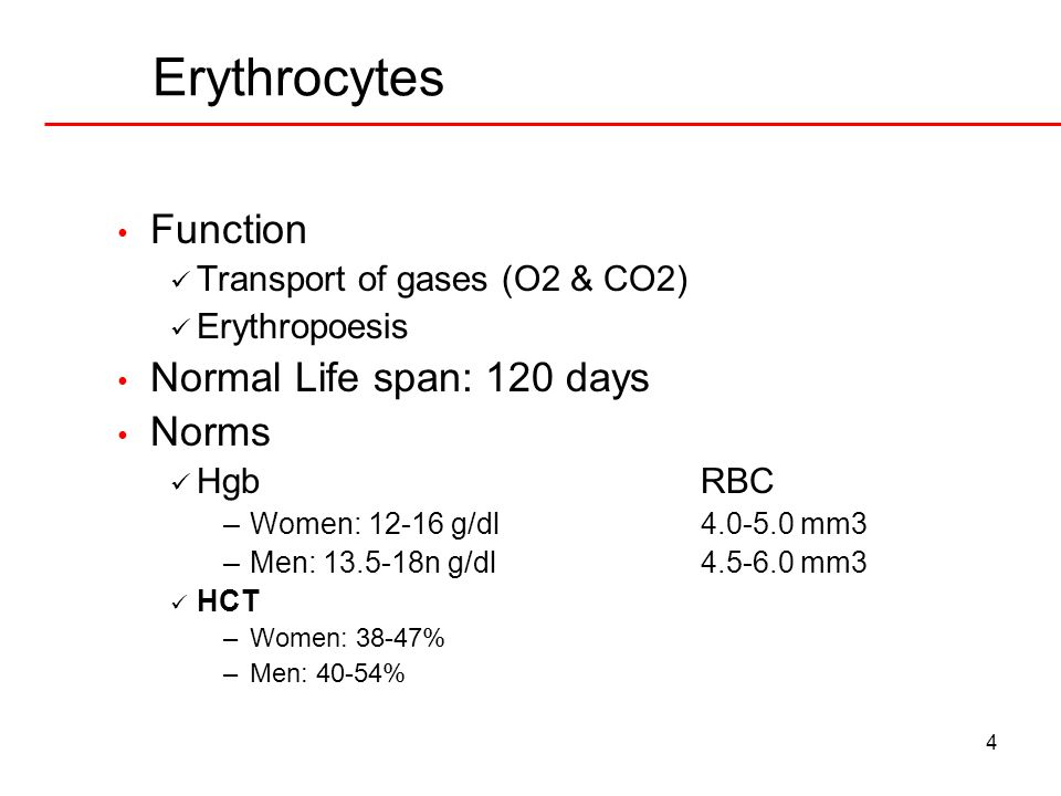 Erythrocytes Function Normal Life span: 120 days Norms