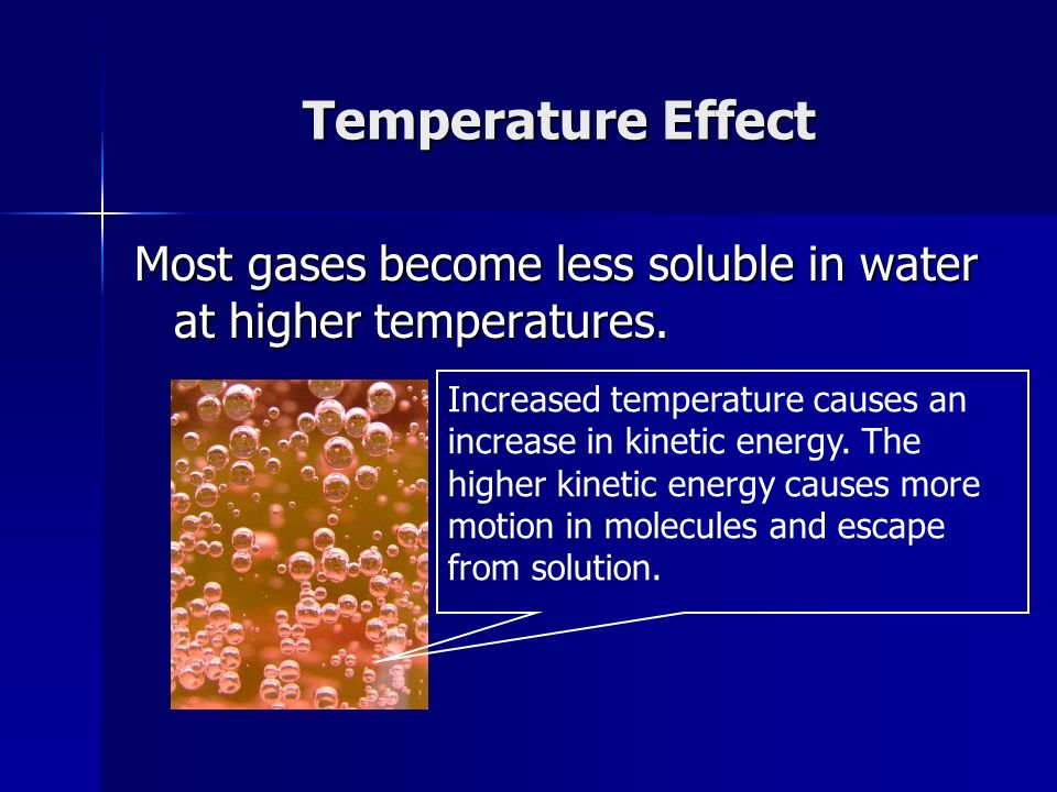 Temperature Effect Most gases become less soluble in water at higher temperatures.