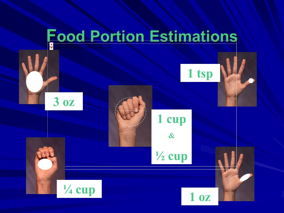 Food Portion Estimations
