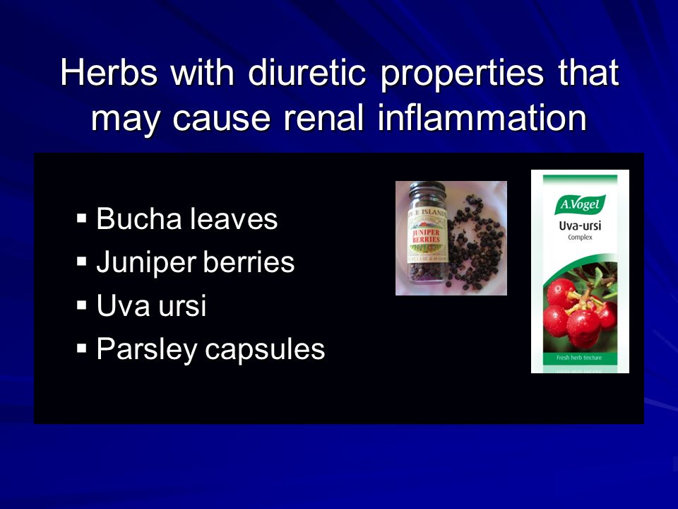 Herbs with diuretic properties that may cause renal inflammation