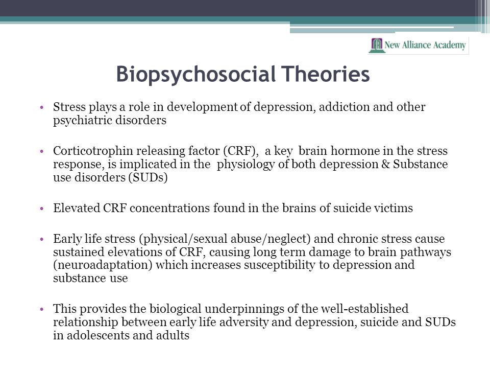 Biopsychosocial Theories