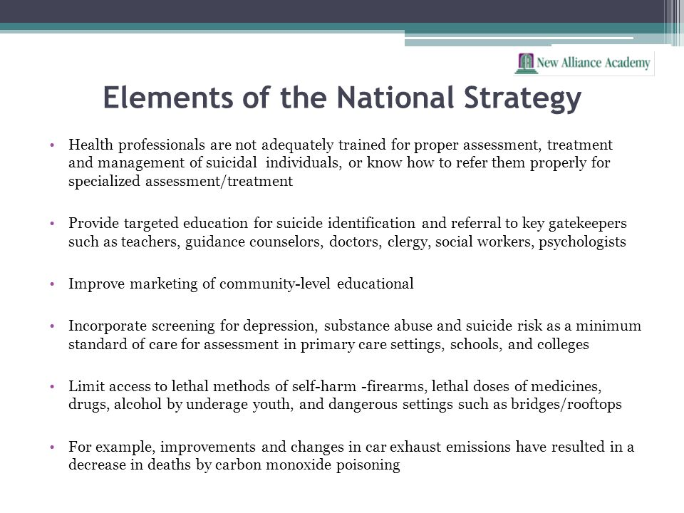 Elements of the National Strategy