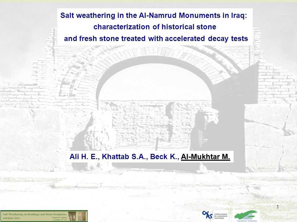 Salt weathering in the Al-Namrud Monuments in Iraq: