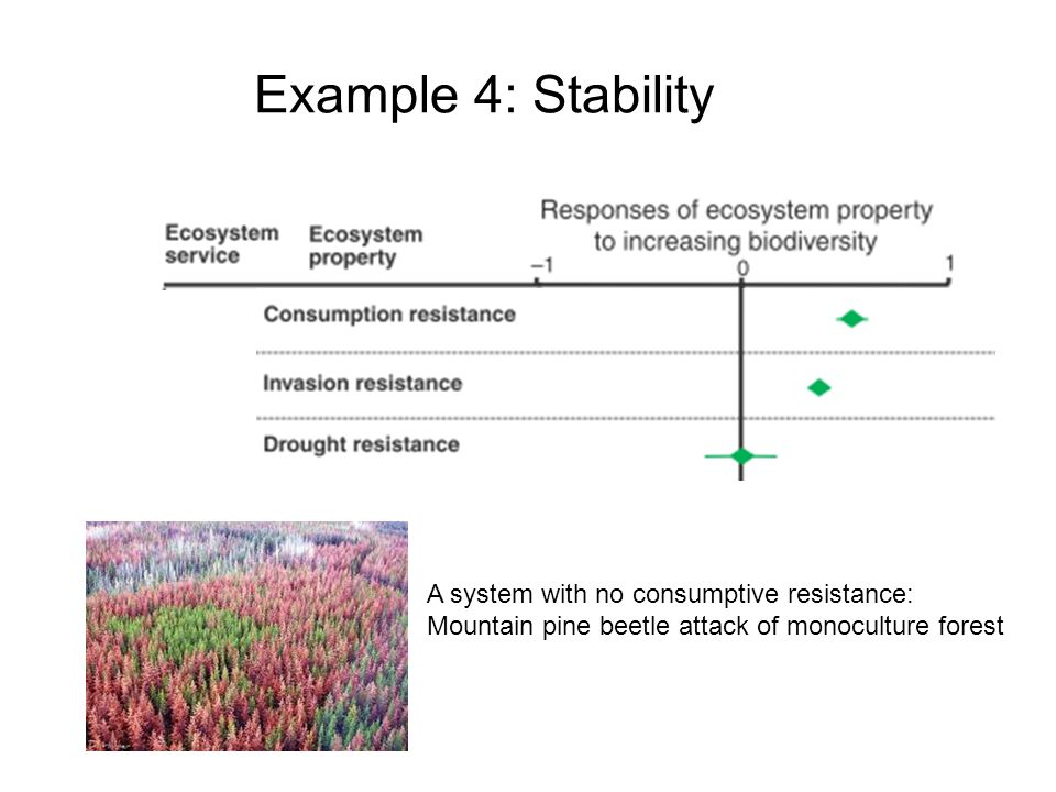 Example 4: Stability A system with no consumptive resistance: