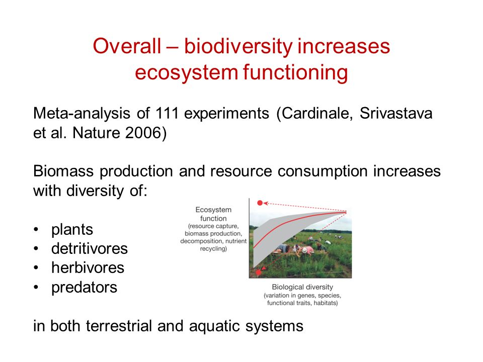 Overall – biodiversity increases ecosystem functioning