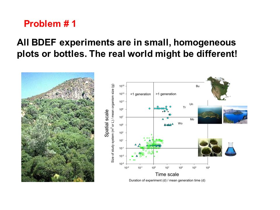 Problem # 1 All BDEF experiments are in small, homogeneous plots or bottles.