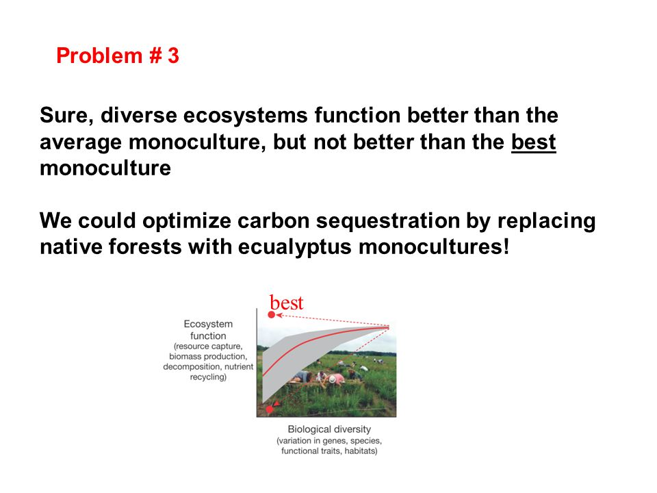 Problem # 3 Sure, diverse ecosystems function better than the average monoculture, but not better than the best monoculture.
