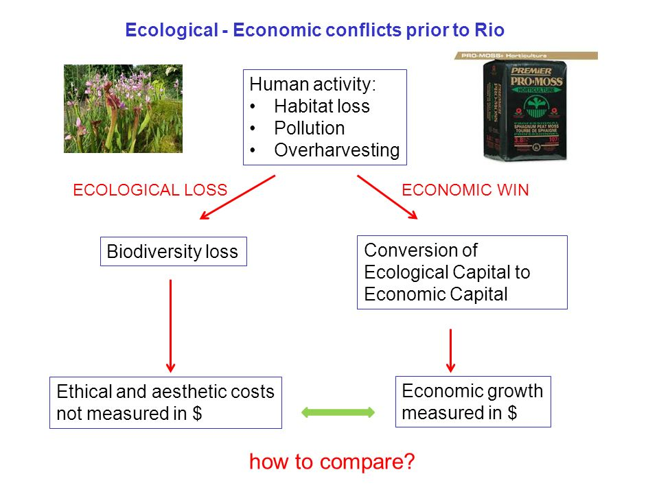 Ecological - Economic conflicts prior to Rio