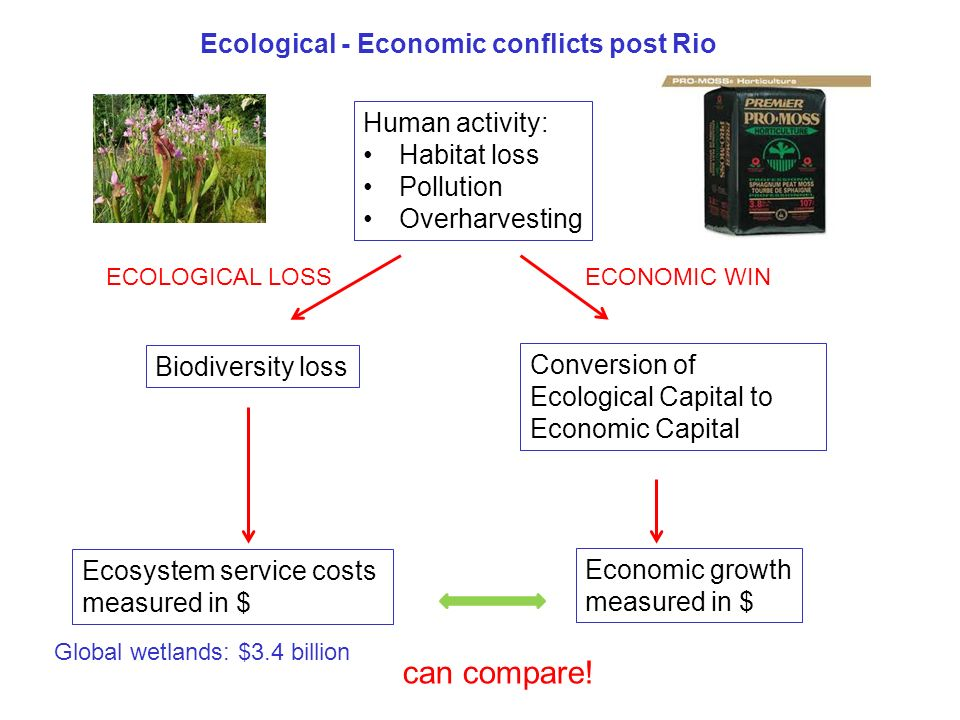 Ecological - Economic conflicts post Rio