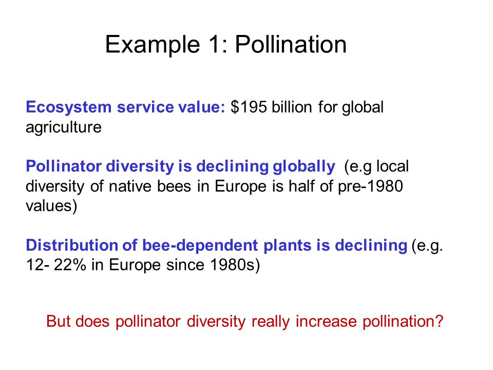 Example 1: Pollination Ecosystem service value: $195 billion for global agriculture.
