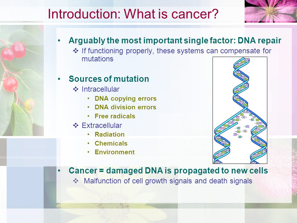Introduction: What is cancer