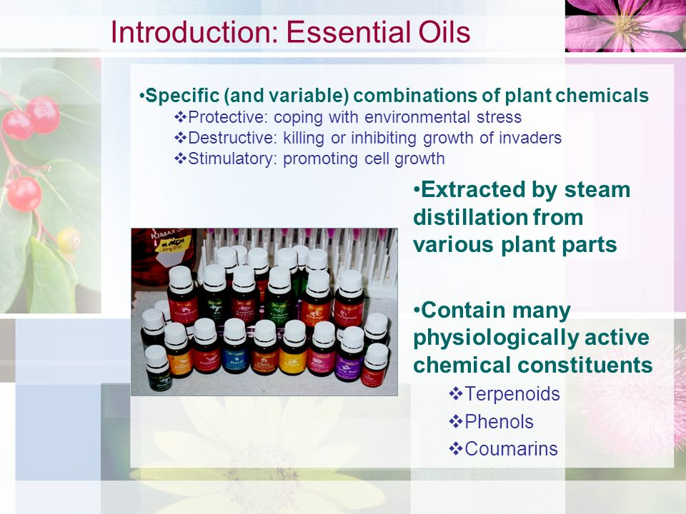 Introduction: Essential Oils
