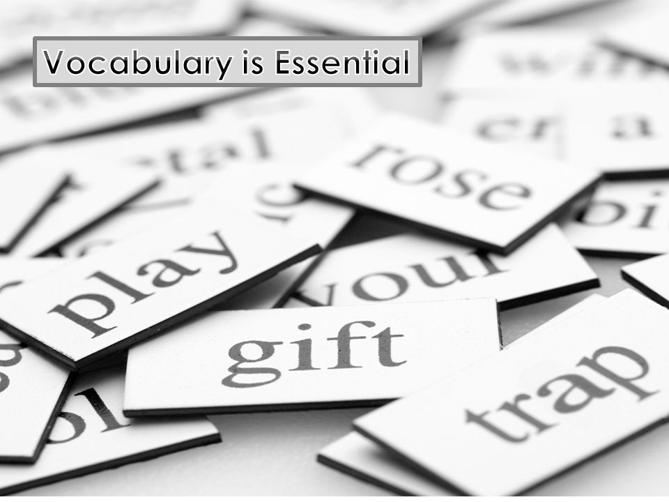 Vocabulary is Essential