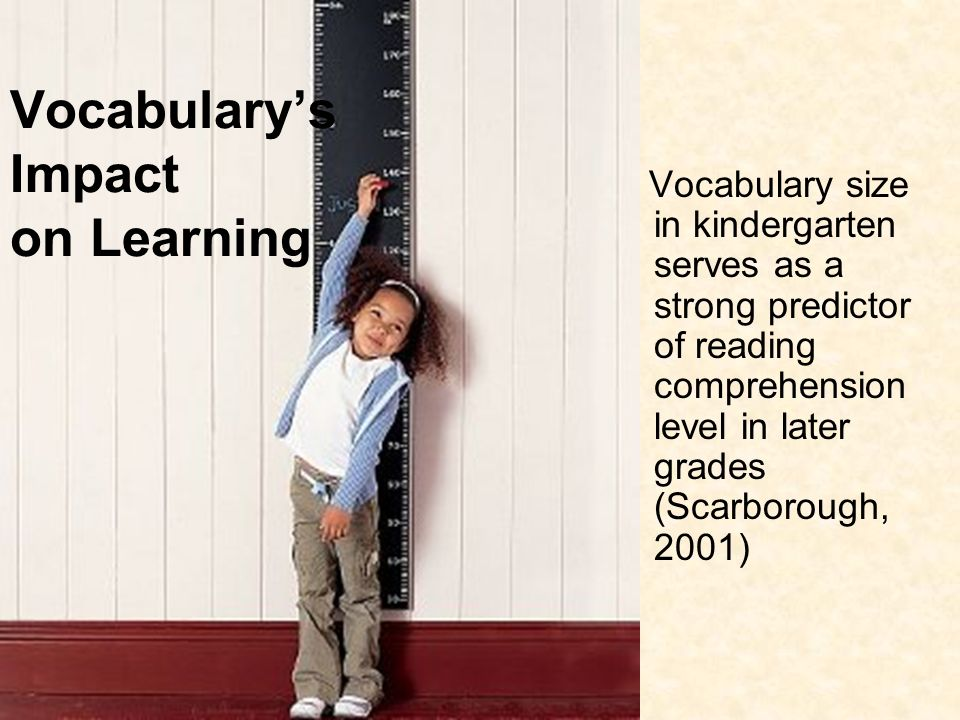 Vocabulary's Impact on Learning
