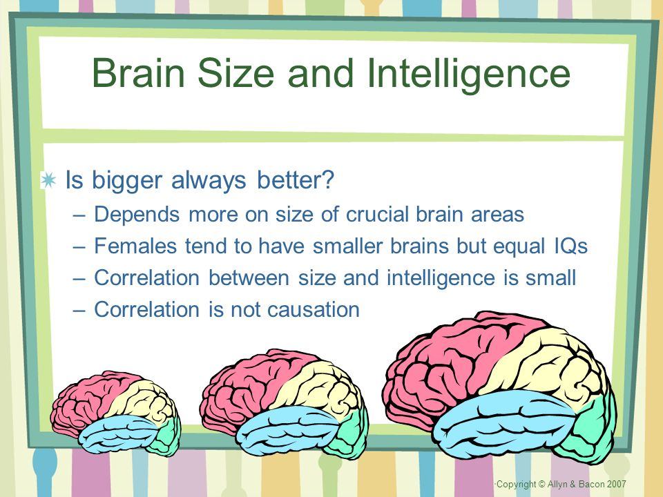 relationship between iq and brain size dataset