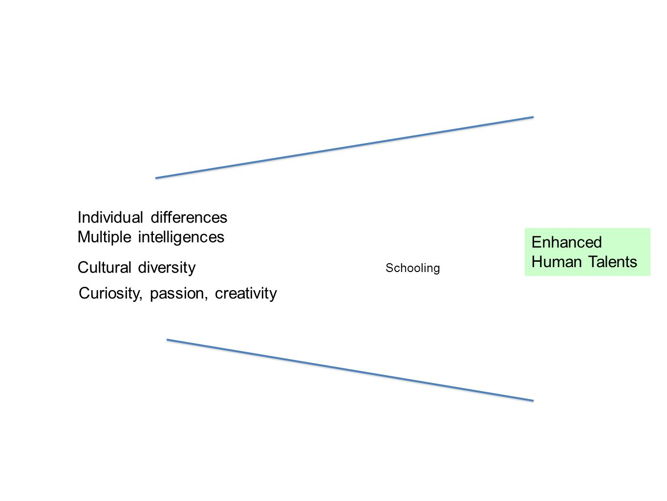 Individual differences Multiple intelligences Enhanced Human Talents