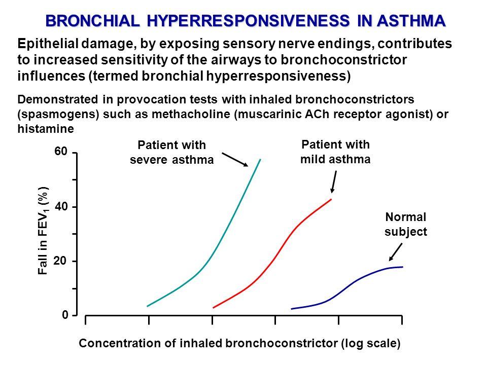 BRONCHIAL HYPERRESPONSIVENESS IN ASTHMA