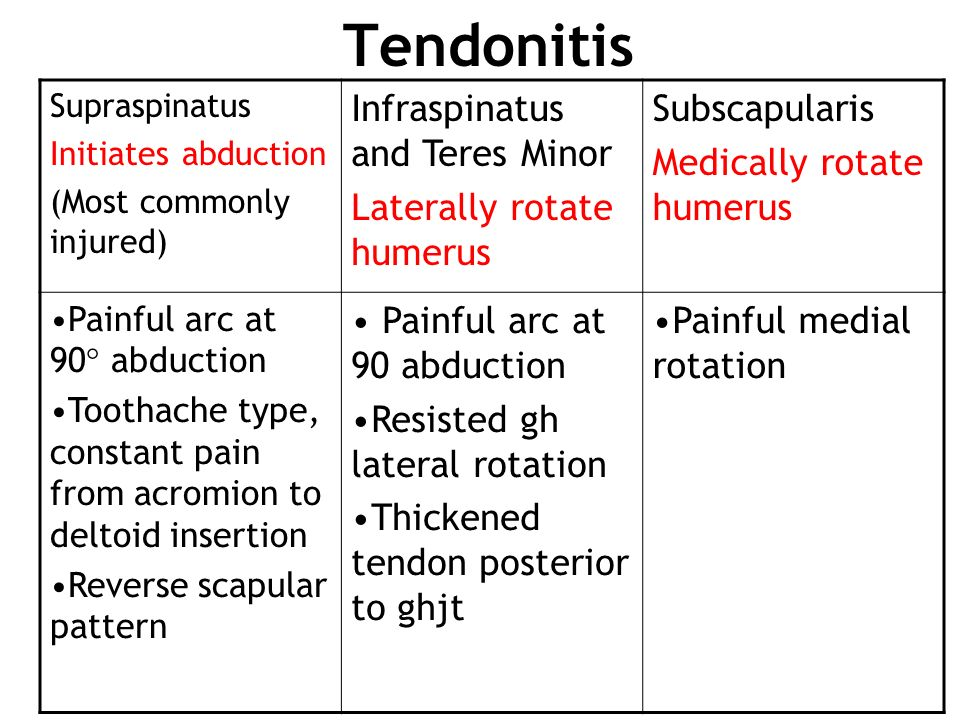 Tendonitis Infraspinatus and Teres Minor Laterally rotate humerus