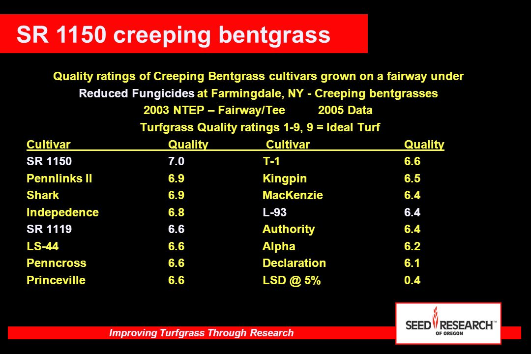SR 1150 creeping bentgrass Quality ratings of Creeping Bentgrass cultivars grown on a fairway under.