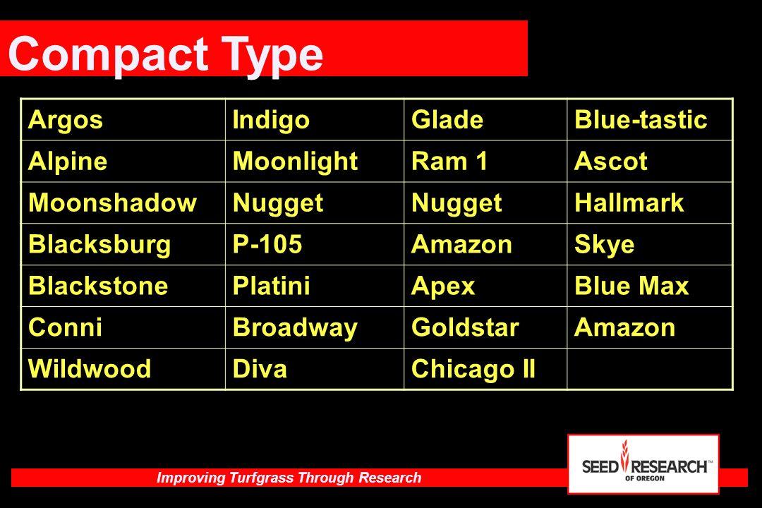 Compact Type Argos Indigo Glade Blue-tastic Alpine Moonlight Ram 1