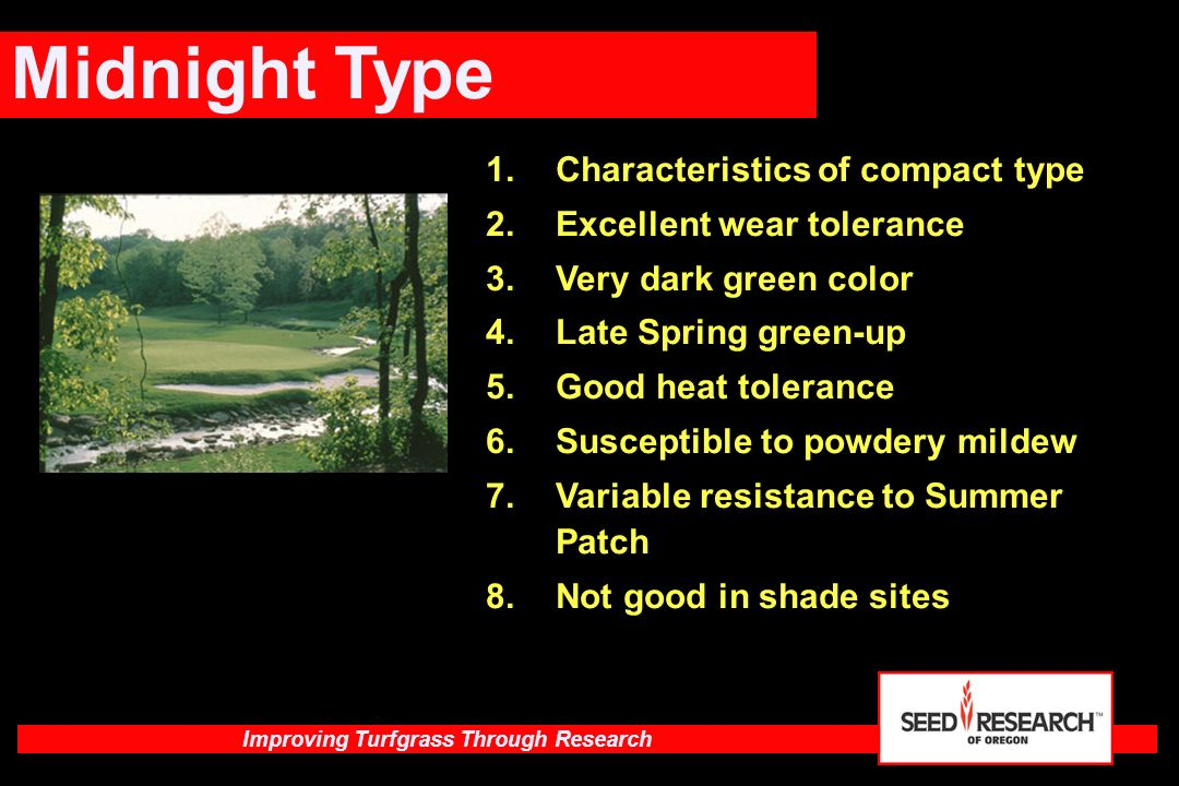 Midnight Type Characteristics of compact type Excellent wear tolerance