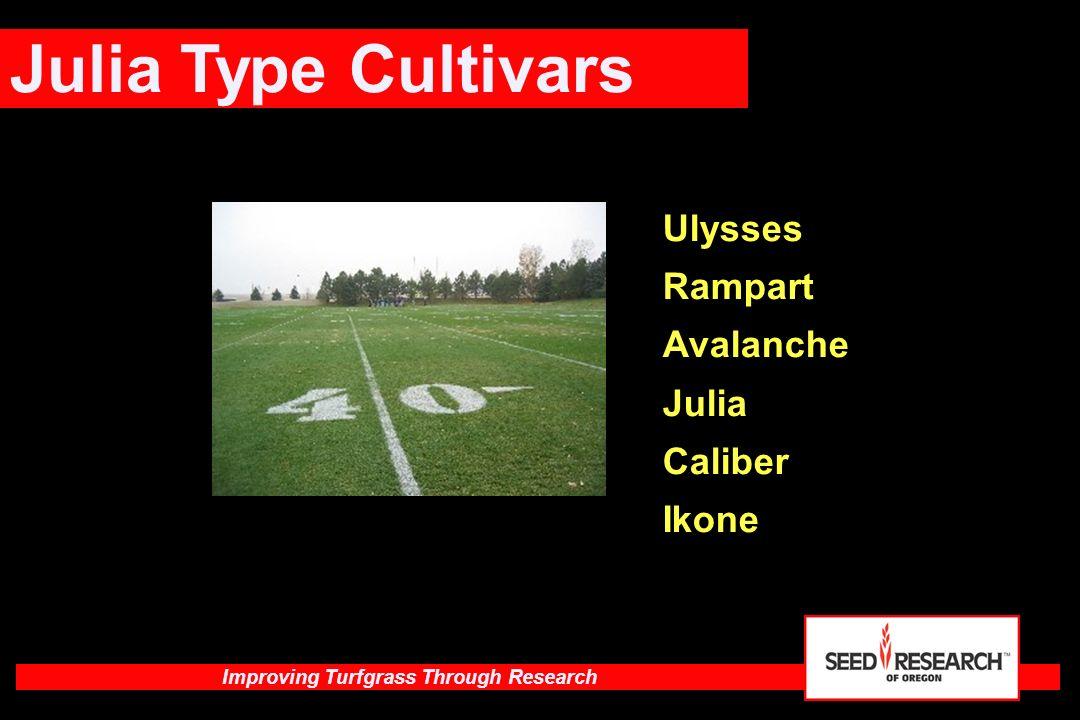 Julia Type Cultivars Ulysses Rampart Avalanche Julia Caliber Ikone