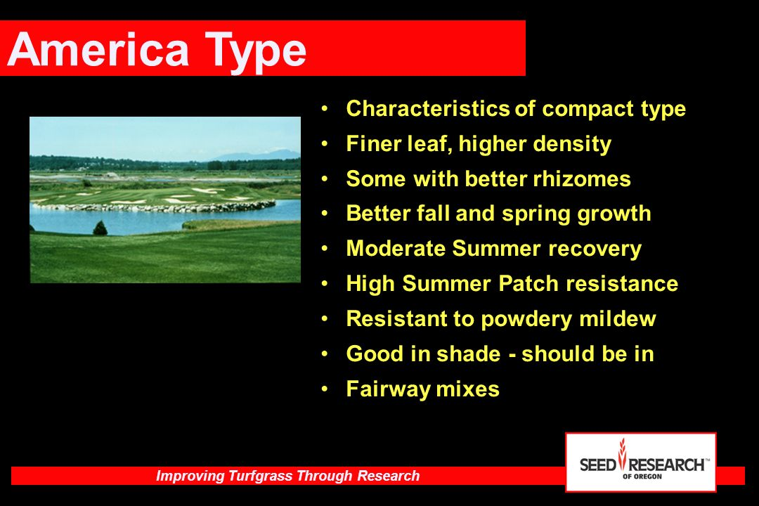 America Type Characteristics of compact type