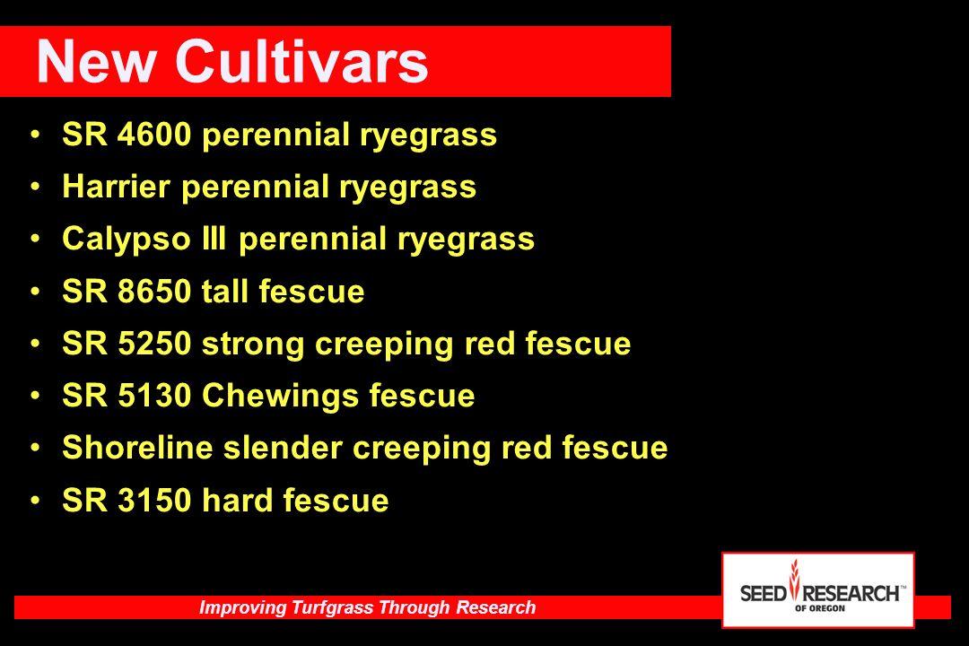 New Cultivars SR 4600 perennial ryegrass Harrier perennial ryegrass