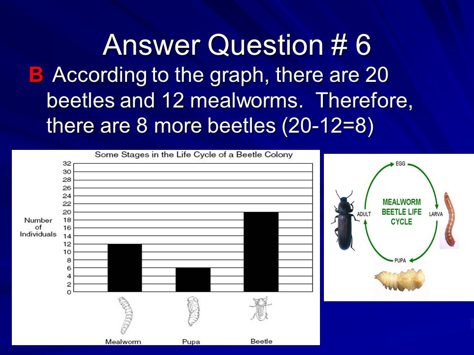 Answer Question # 6 B According to the graph, there are 20 beetles and 12 mealworms.