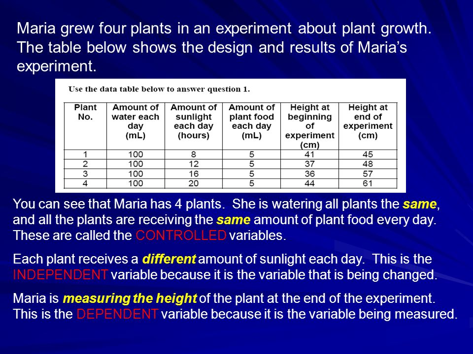 Maria grew four plants in an experiment about plant growth