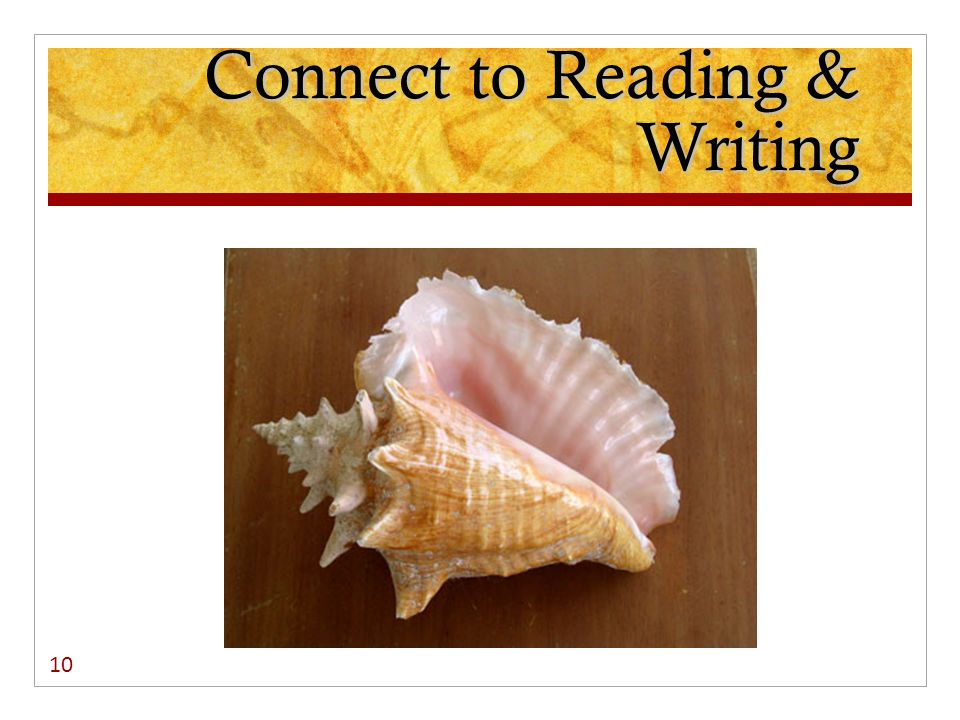 Connect to Reading & Writing