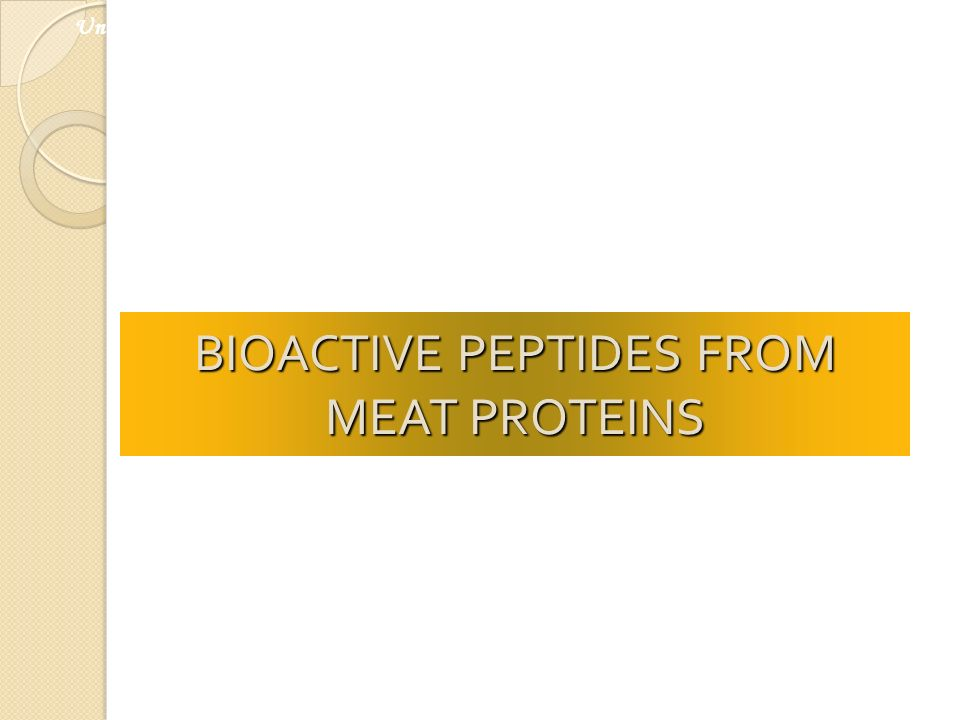 BIOACTIVE PEPTIDES FROM MEAT PROTEINS