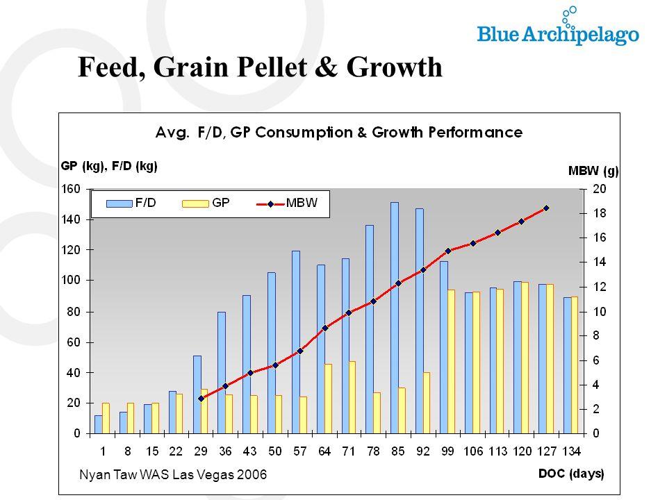 Feed, Grain Pellet & Growth