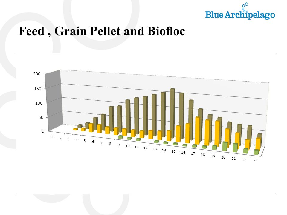 Feed , Grain Pellet and Biofloc
