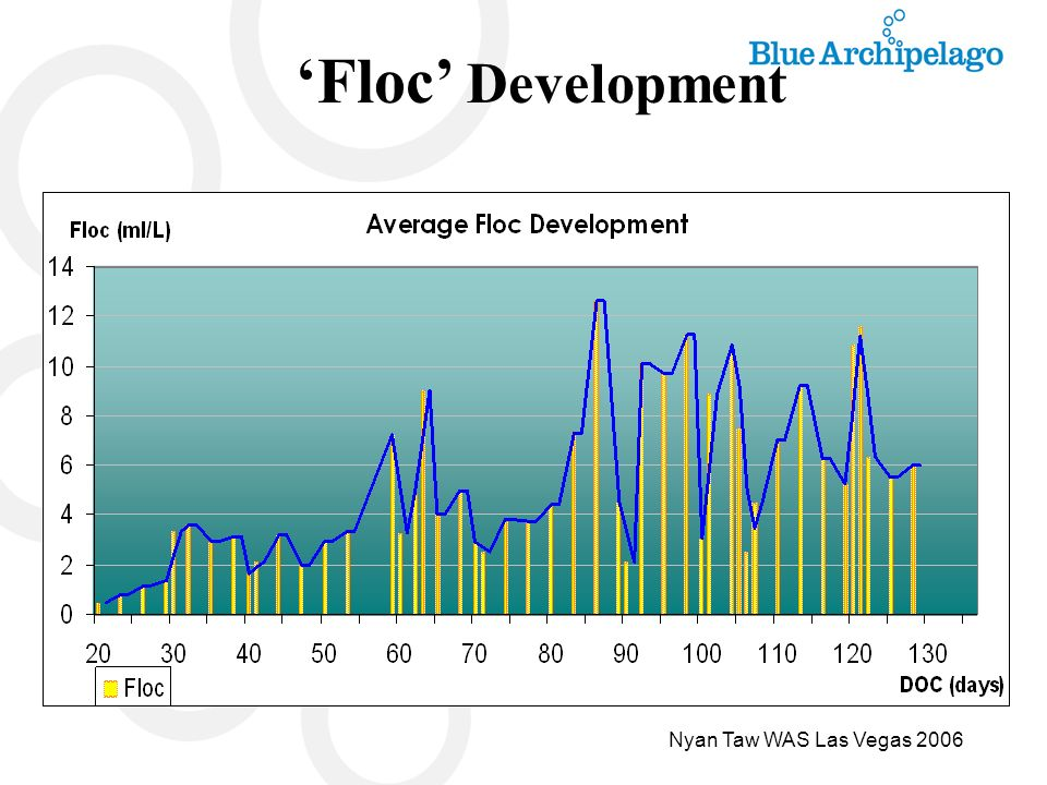 'Floc' Development Nyan Taw WAS Las Vegas 2006