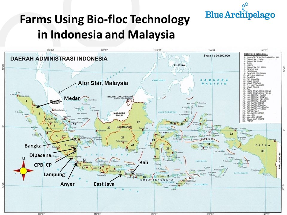 Farms Using Bio-floc Technology in Indonesia and Malaysia