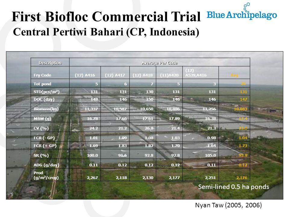 First Biofloc Commercial Trial Central Pertiwi Bahari (CP, Indonesia)