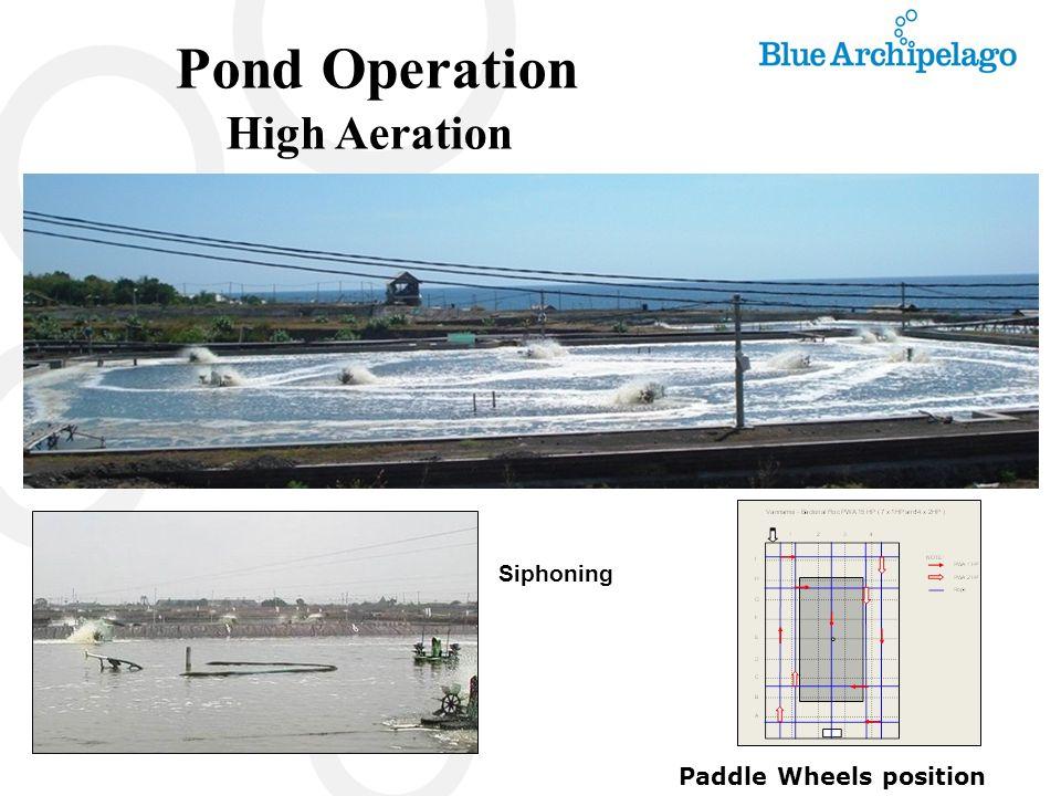Pond Operation High Aeration