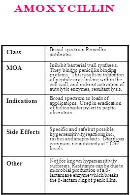 Amoxycillin Class MOA Indications Side Effects Other