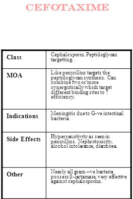 cefotaxime Class MOA Indications Side Effects Other