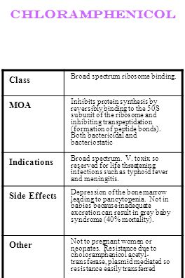 chloramphenicol Class MOA Indications Side Effects Other